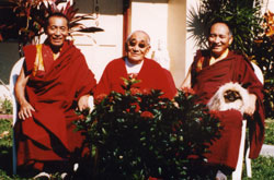 meditation photos of masters of the Nyingma Lineage of Tibetan Buddhism